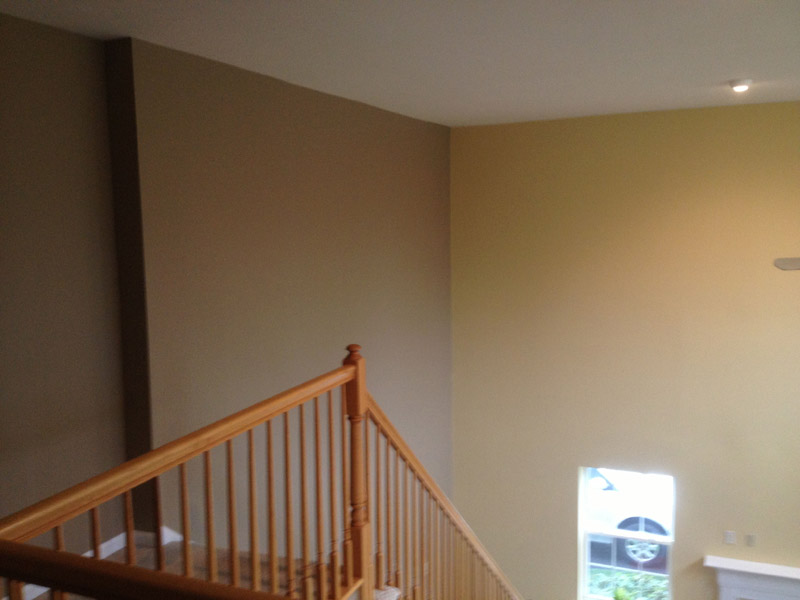 Painter accent wall in Sinking Spring Pa