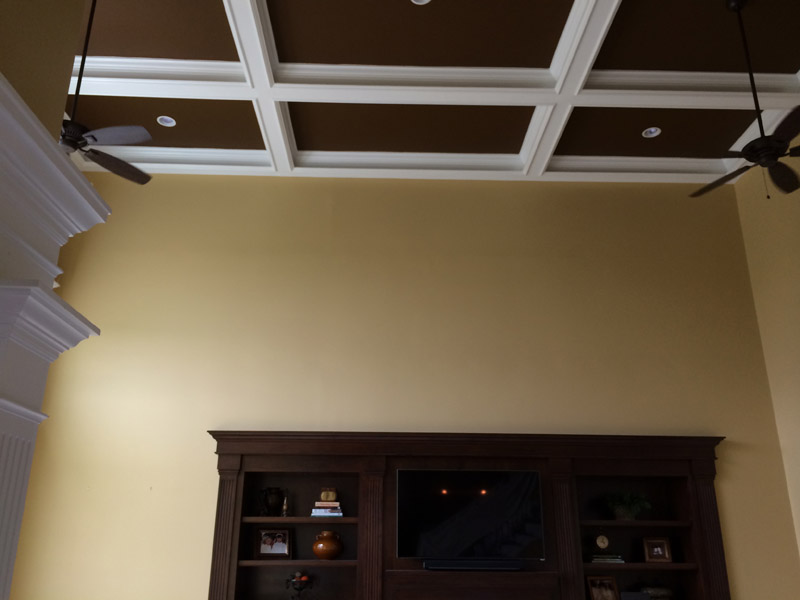Painted coffer ceiling, great room walls